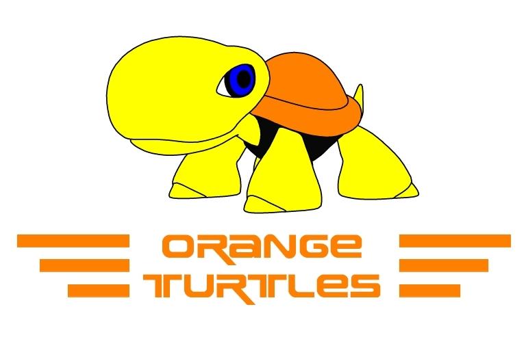 Orange turtle Tortue10