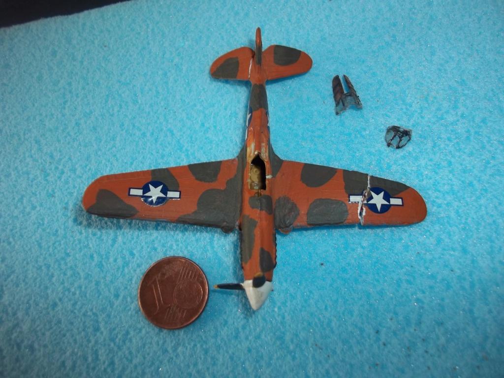 Curtiss P-40 Warhawk 1/144  102_4120
