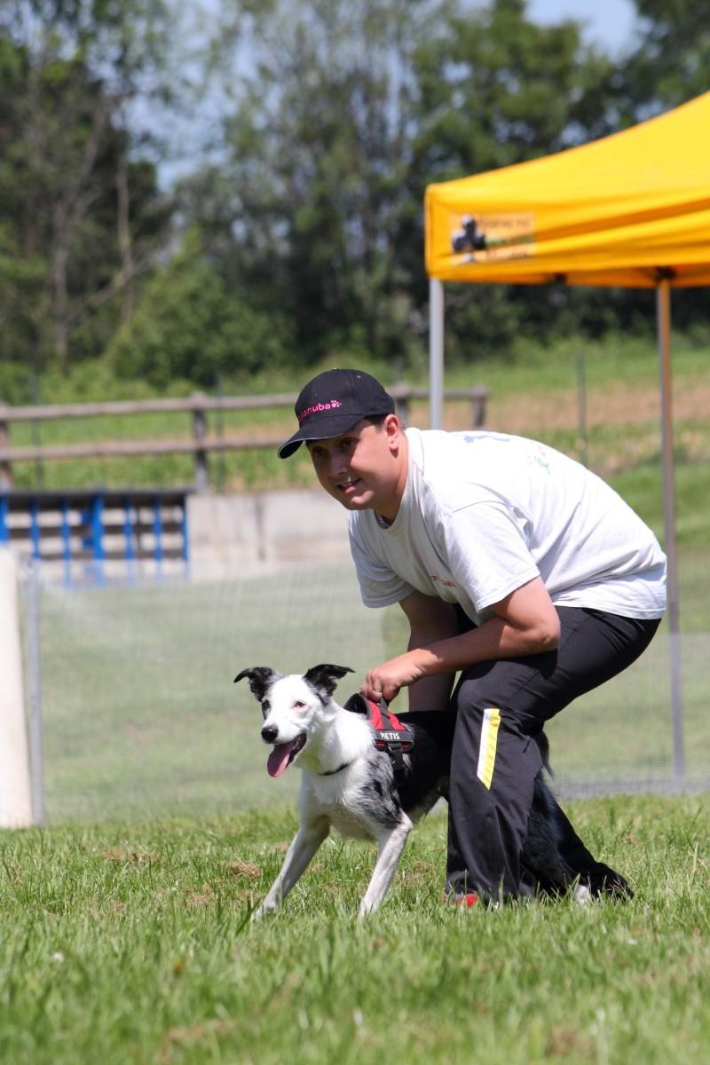 Vos chiens et leurs harnais! Photo  - Page 3 02_06_10
