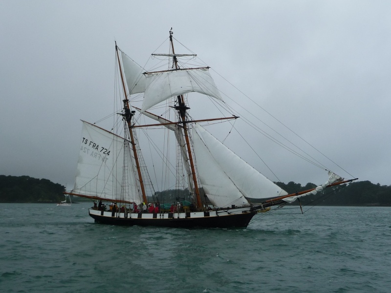 [Marine à voile] SEMAINE DU GOLFE (MORBIHAN) 2013 P1290122
