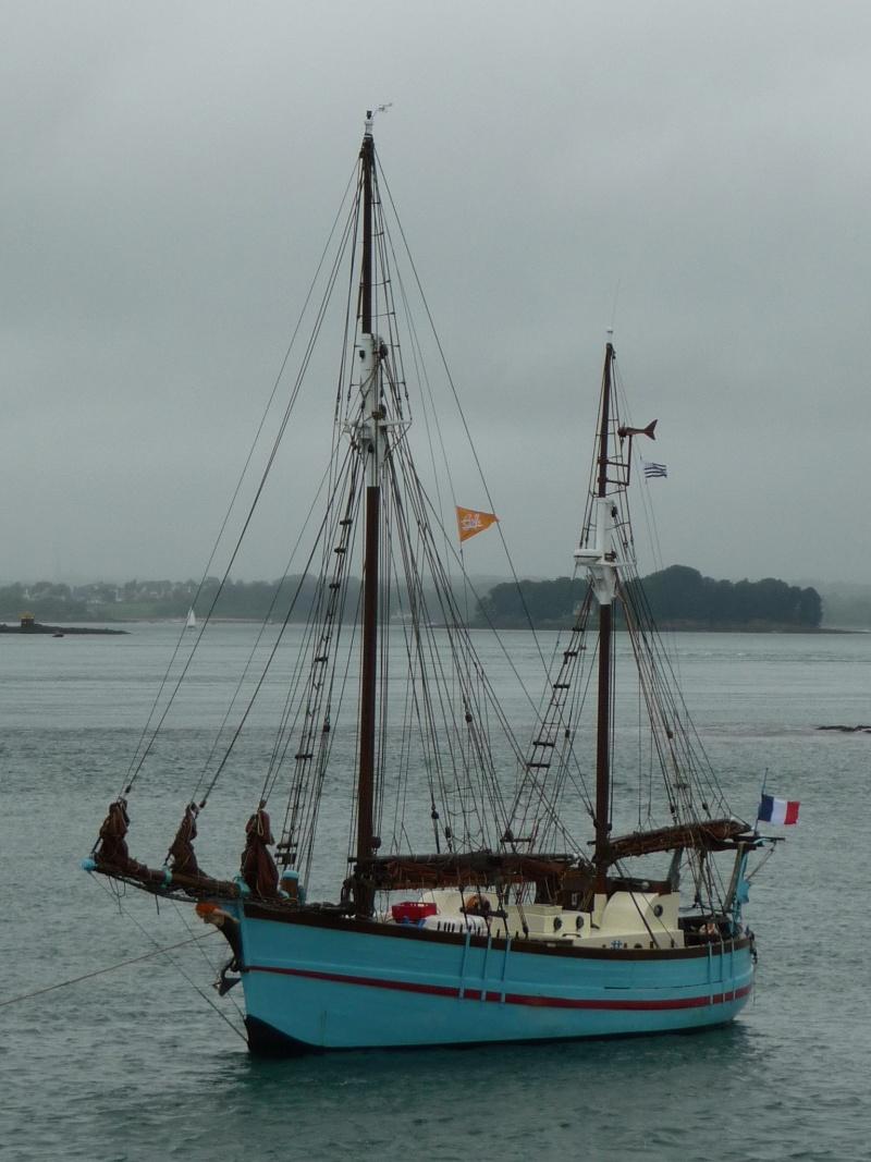 [Marine à voile] SEMAINE DU GOLFE (MORBIHAN) 2013 P1290127