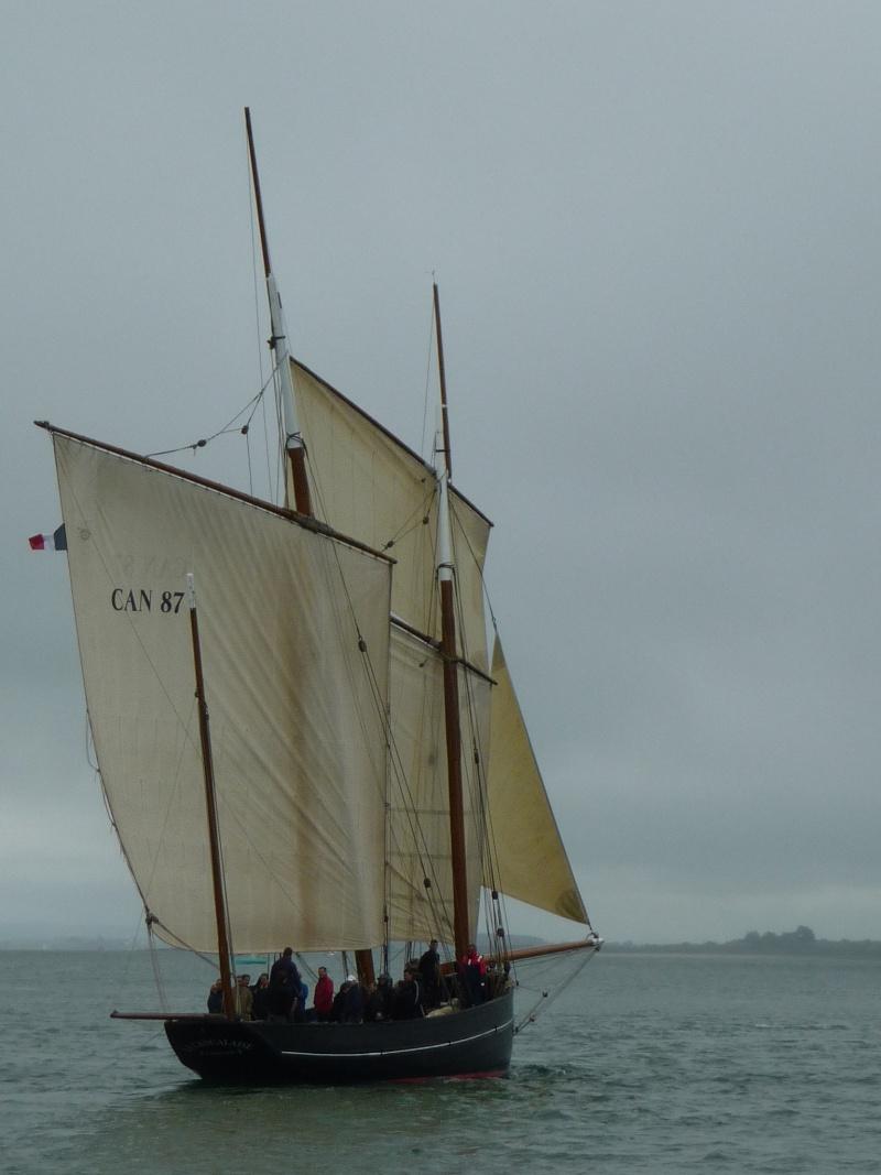 [Marine à voile] SEMAINE DU GOLFE (MORBIHAN) 2013 P1290135