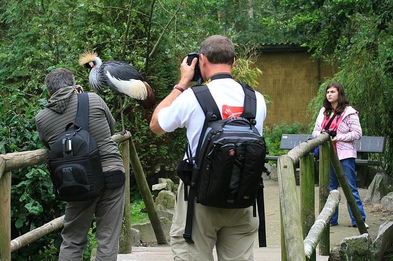 Sortie Animaux au Zoo d'Olmen le 16 août - Les photos d'ambiances Img_3511