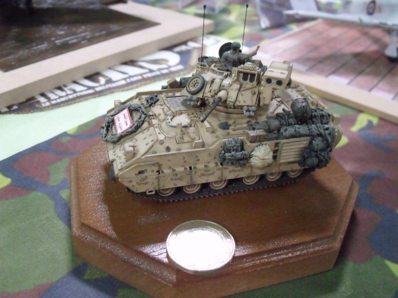 Saumur 2013 autres maquettes Dscf2224