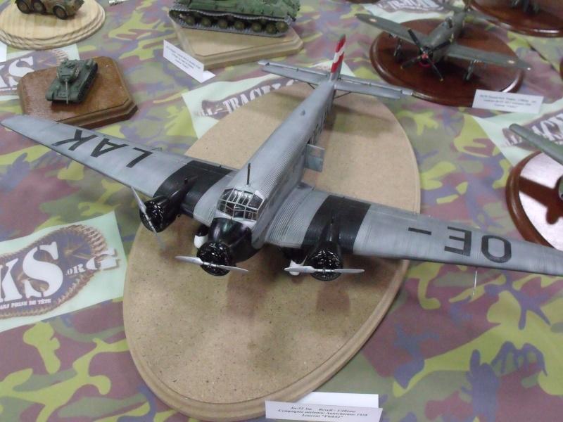 Saumur 2013 autres maquettes Dscf2235