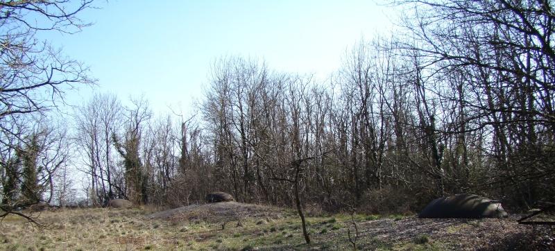 Festung Metz:le groupe fortifié Verdun G_f_ve65