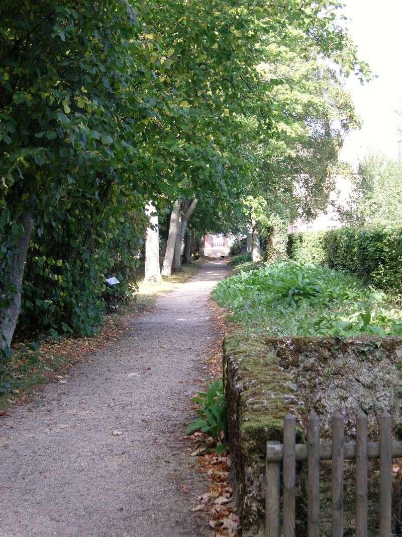 Port-Royal des Champs Snc13713