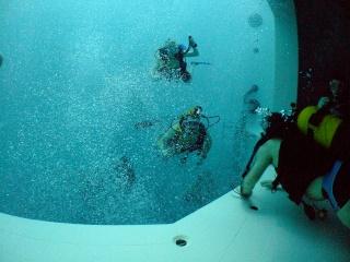 Nemo 33 Dscf7311