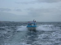 : SEA ANGLING WATERFORD - PORTAL Wet_an10