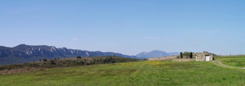Introduction Cypripedium calceolus dans le Jura suisse Panora10