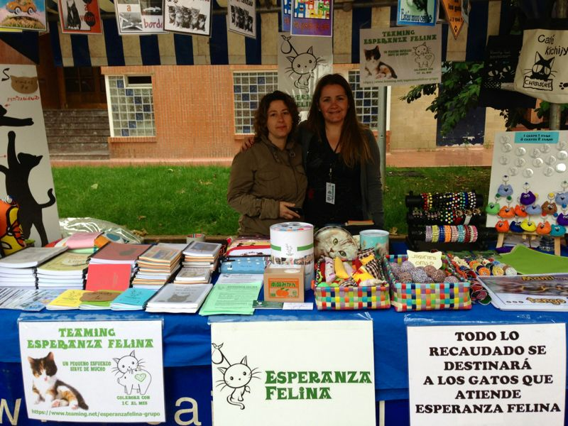 Esperanza Felina en el Mercado del barrio de San Martin domingo 23/06/13 (Vitoria) - Página 3 Cid_7710