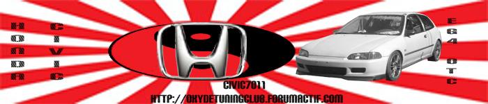 la banderole du club Bannia10