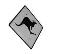 Panneaux Kangoo10