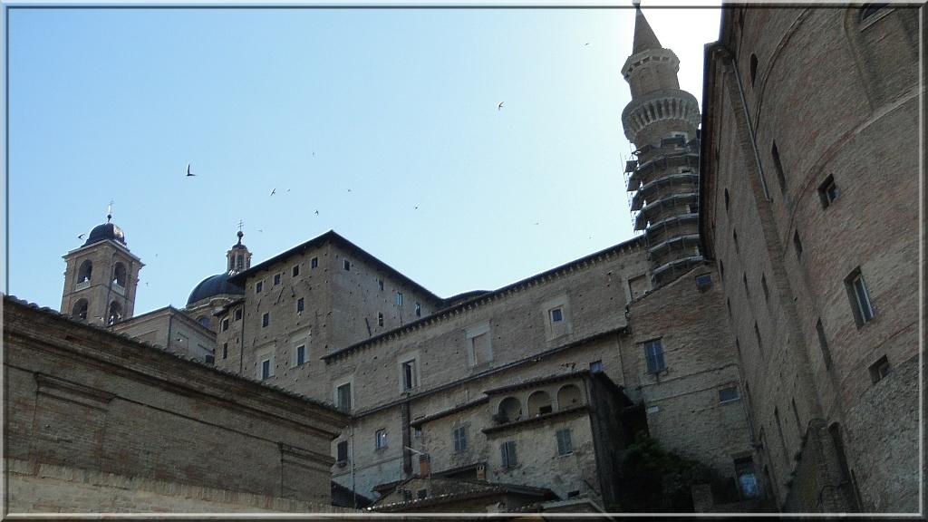 URBINO, EMILIE ROMAGNE, ITALIE Urbino32