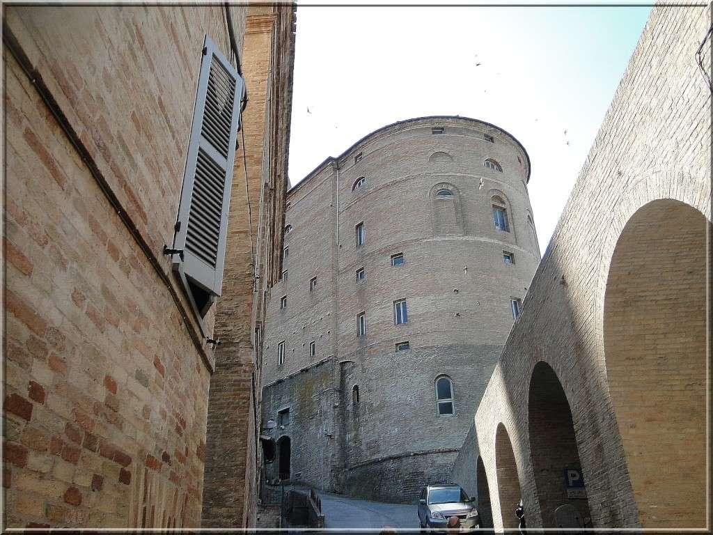 URBINO, EMILIE ROMAGNE, ITALIE Urbino33