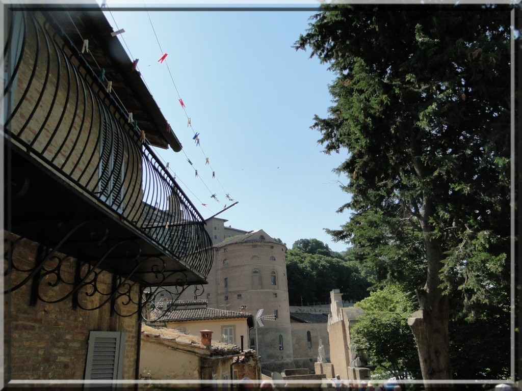 URBINO, EMILIE ROMAGNE, ITALIE Urbino36