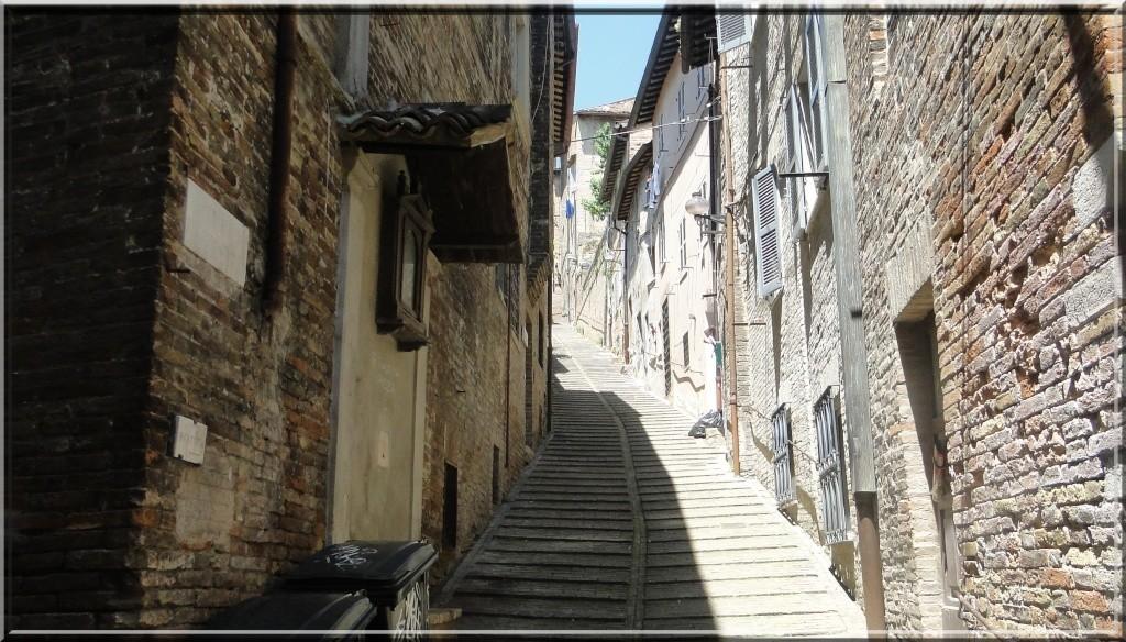 URBINO, EMILIE ROMAGNE, ITALIE Urbino43