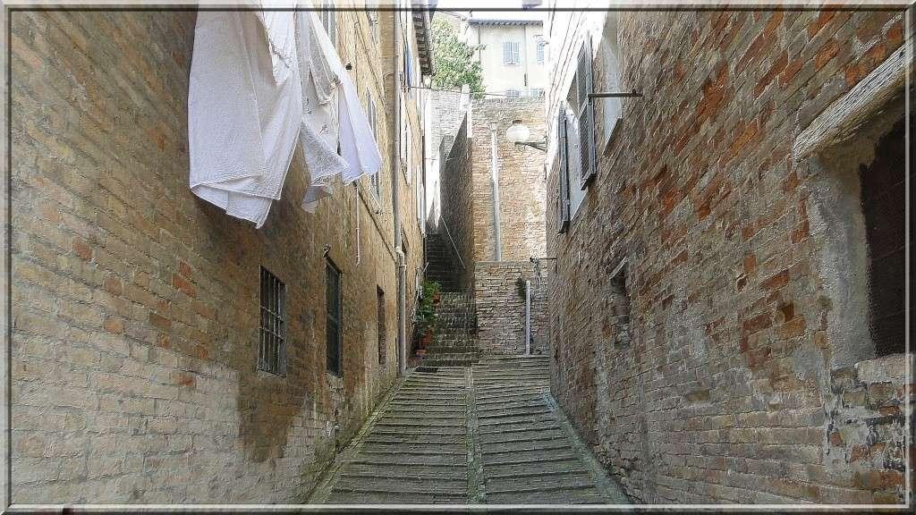 URBINO, EMILIE ROMAGNE, ITALIE Urbino44