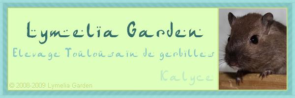 Lymelia Garden