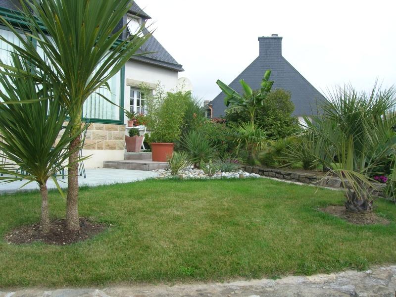Le jardin de chez mes parents. Dscn1735