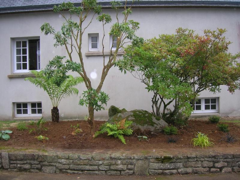 Le jardin de chez mes parents. Dscn1740