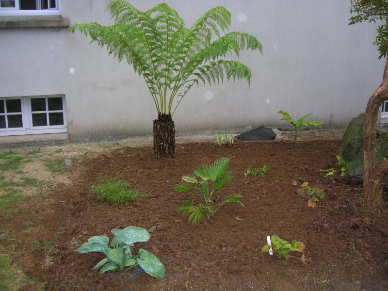 Le jardin de chez mes parents. Dscn1741