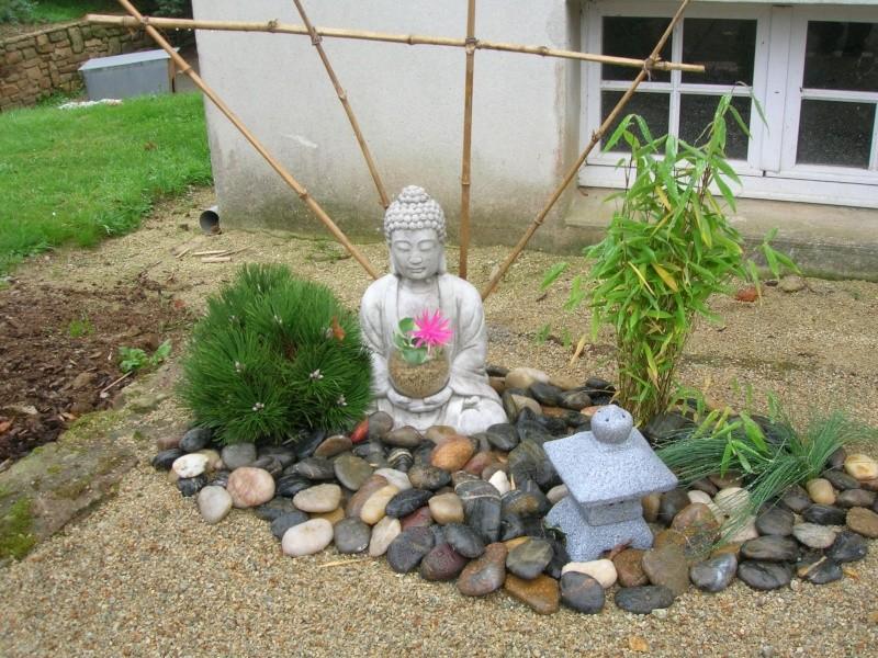 Le jardin de chez mes parents. Dscn1746