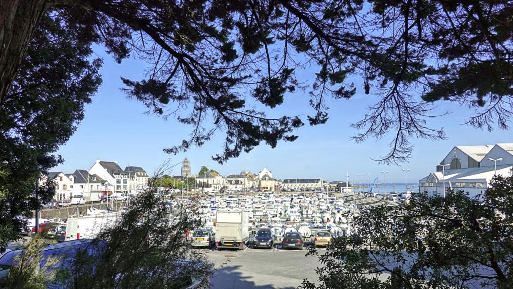 [Activité hors Marine des ports] LE CROISIC Port, Traict, Côte Sauvage... - Page 9 01_25-10