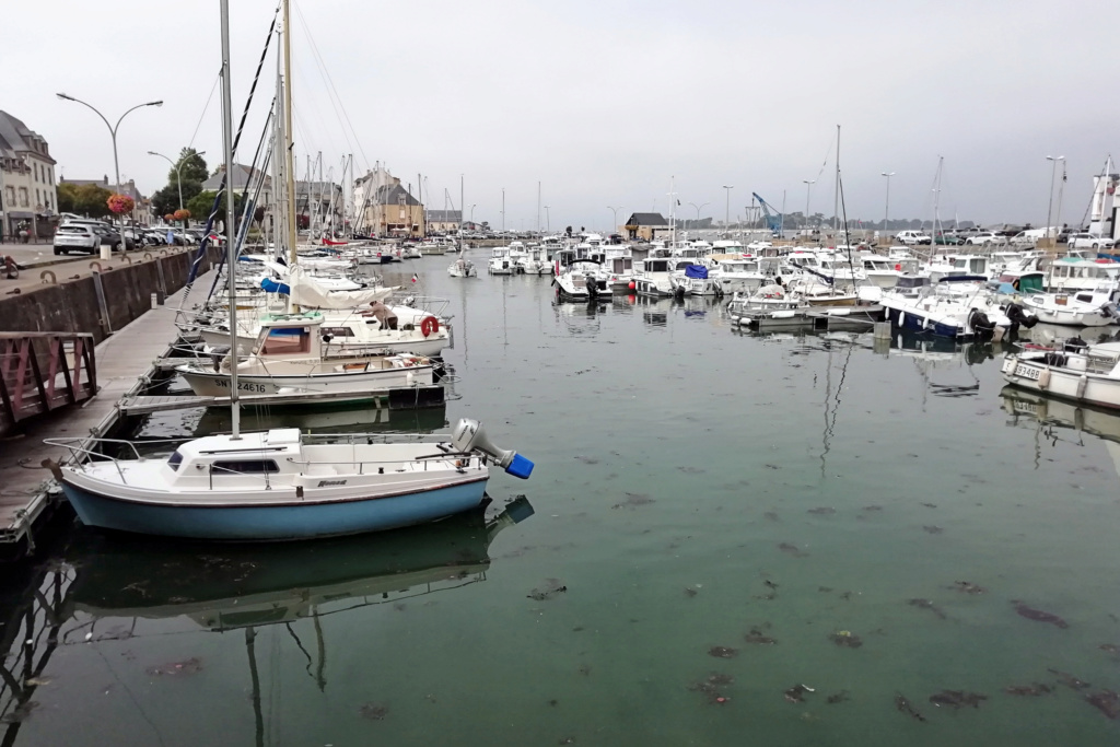 [Activité hors Marine des ports] LE CROISIC Port, Traict, Côte Sauvage... - Page 9 25_por10