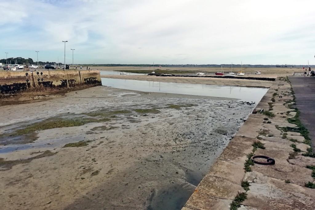 [Activité hors Marine des ports] LE CROISIC Port, Traict, Côte Sauvage... - Page 10 38_30_10