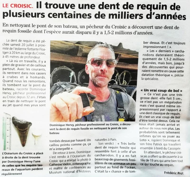 [Activité hors Marine des ports] LE CROISIC Port, Traict, Côte Sauvage... - Page 9 Img_2047
