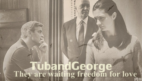 George Clooney and Tuba Buyukustun photshopped pictures - Page 15 Cats10