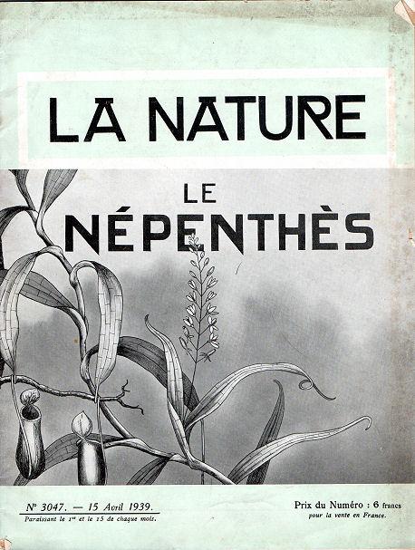 La nature - Le Népenthès La_nat10