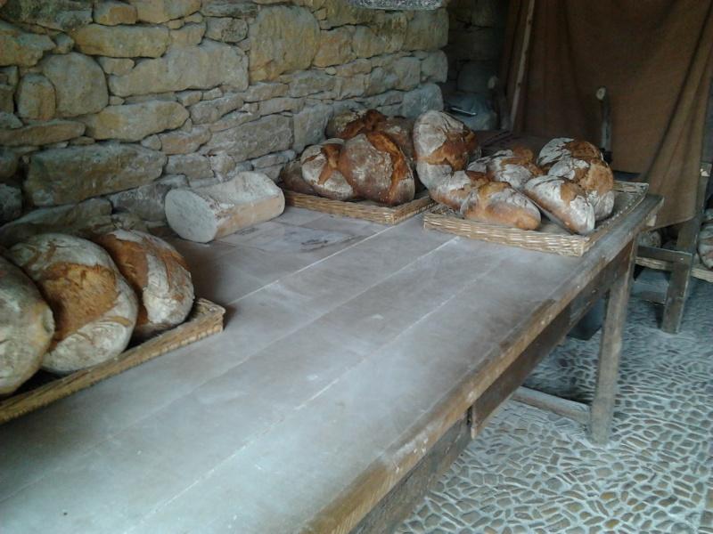 Dordogne Photo011