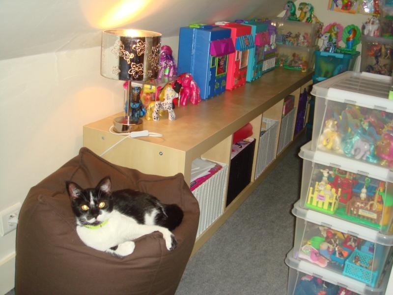 [MES TOUT PETITS AMIS] LittlePuppy's collec! - Page 10 Dsc03453