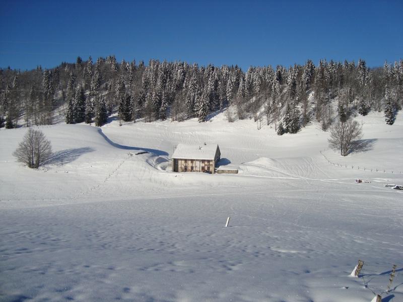 Notre maison... le rêve pour les nordiques! Dsc00110