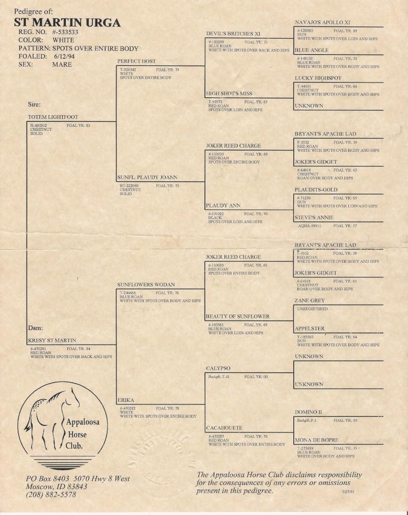 lignée saint martin - Page 2 Padigr10