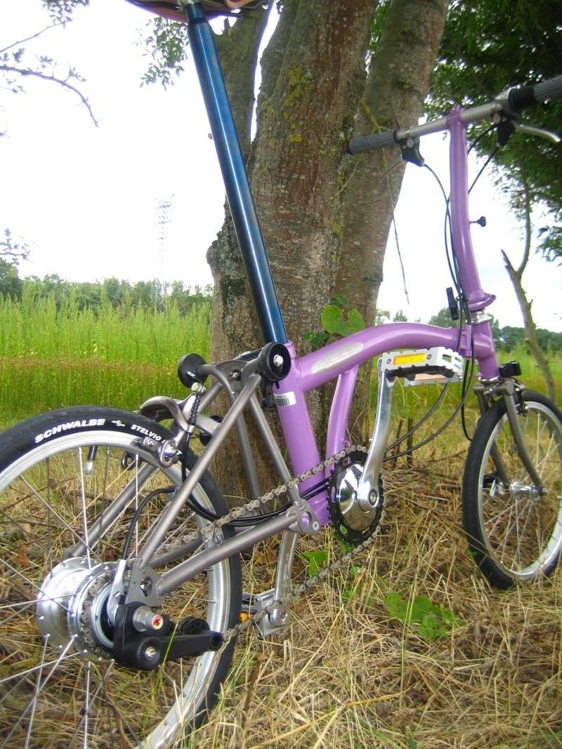 Vends S8E Titane Purple Haze (VENDU) Img_2617