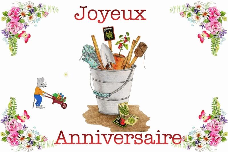 Joyeux anniversaire Basf13 B1343c10