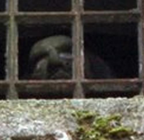 Bodmin jail Bodmin13
