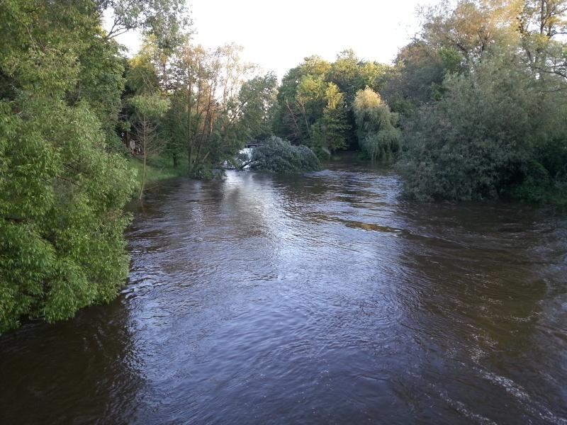 Hochwasser (und andere (Natur)katastrophen) 20130610