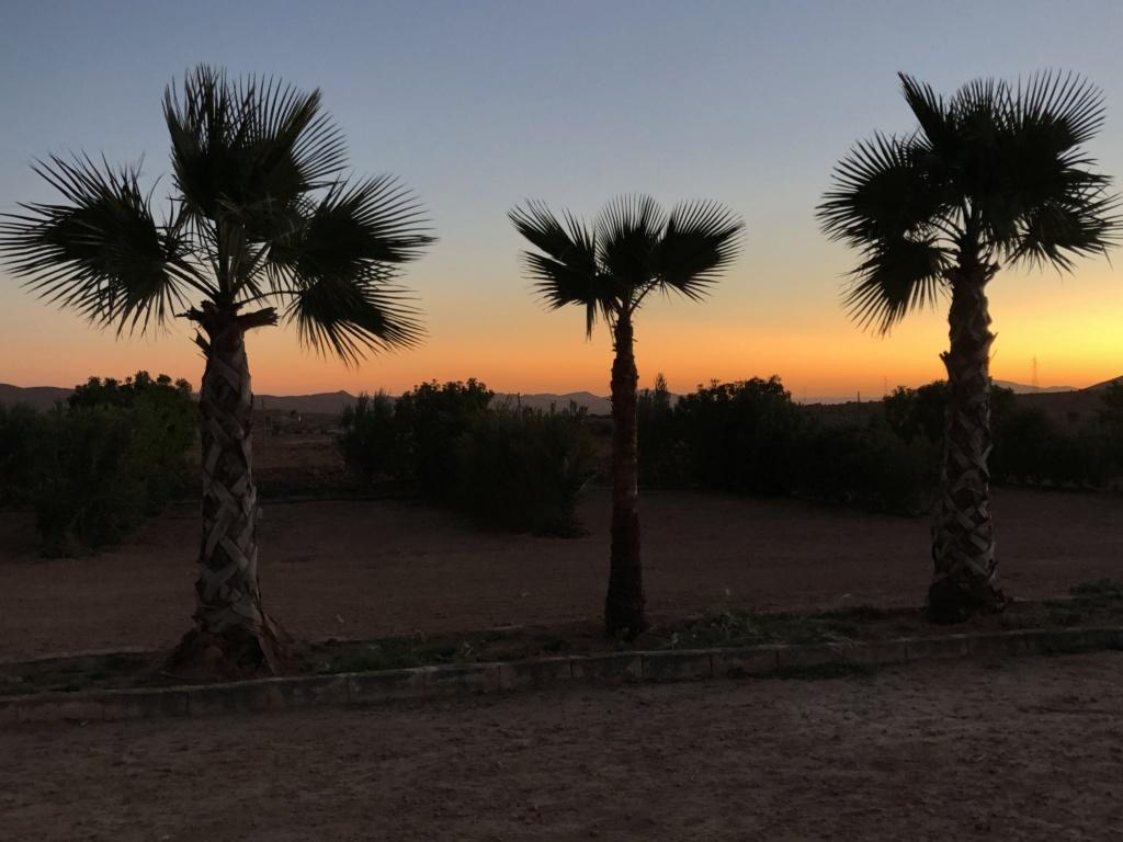 [Maroc Camp/Dernières nouvelles] Taux de remplissage des campings (saison 2019/2020 - Page 2 B49e8010