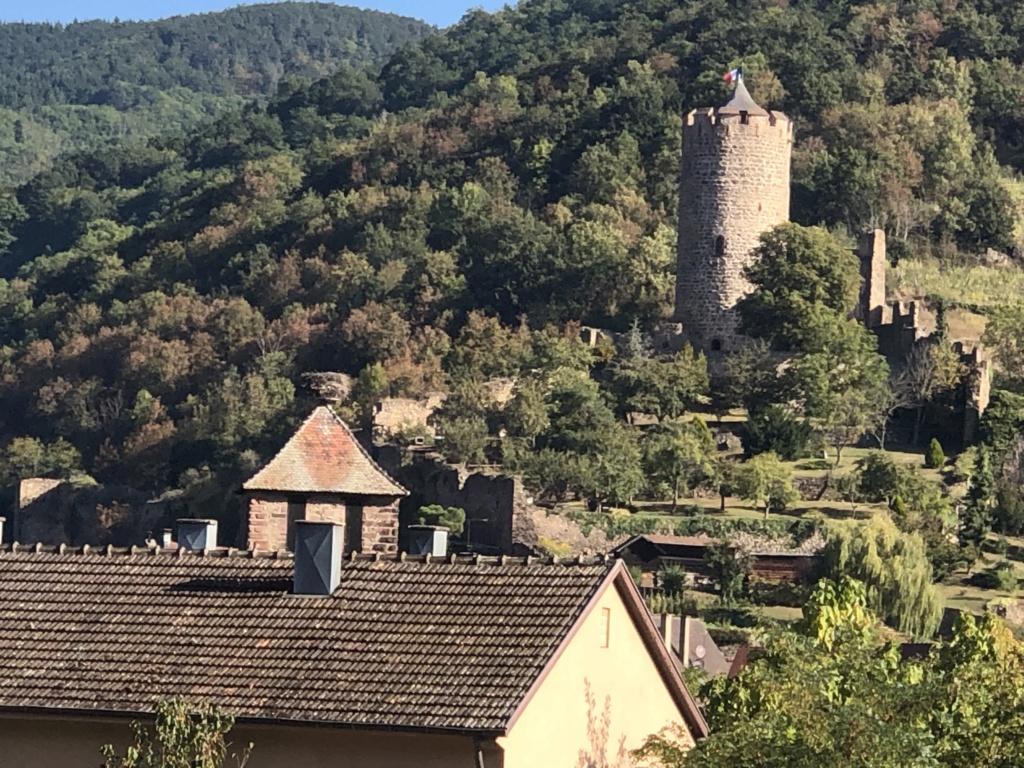 Josi Jean  en Alsace [Autres voyages/France]  C6b4a310