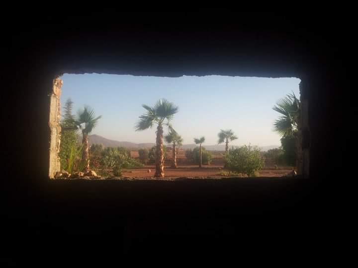 [Maroc Camp/Dernières nouvelles]  BOUIZAKARNE : Camping Tinnoubga   - Page 8 Img_3410