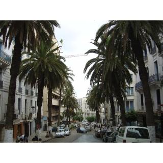 Photos de villes d'Algérie  - Page 2 Limg1916