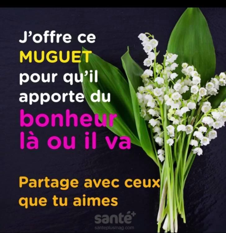 Les bonjours et contacts jounaliers du Mois de Mai 2019 58638910