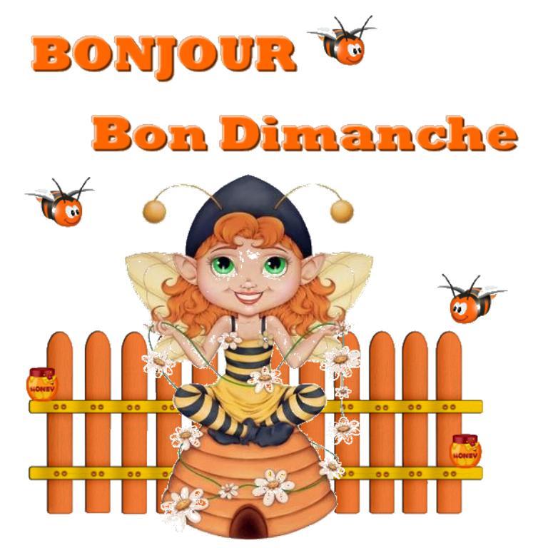 Les bonjours et contacts jounaliers du Mois de Mai 2019 Dimanc15