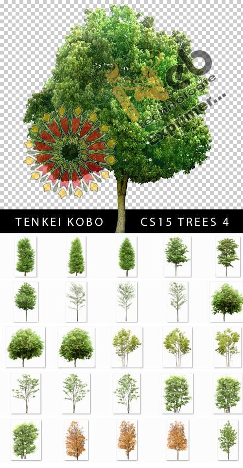 Arbres Design Transparants CS15 Trees 4 Tenkei10