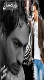 تامر حسني عبود الفتحاوي