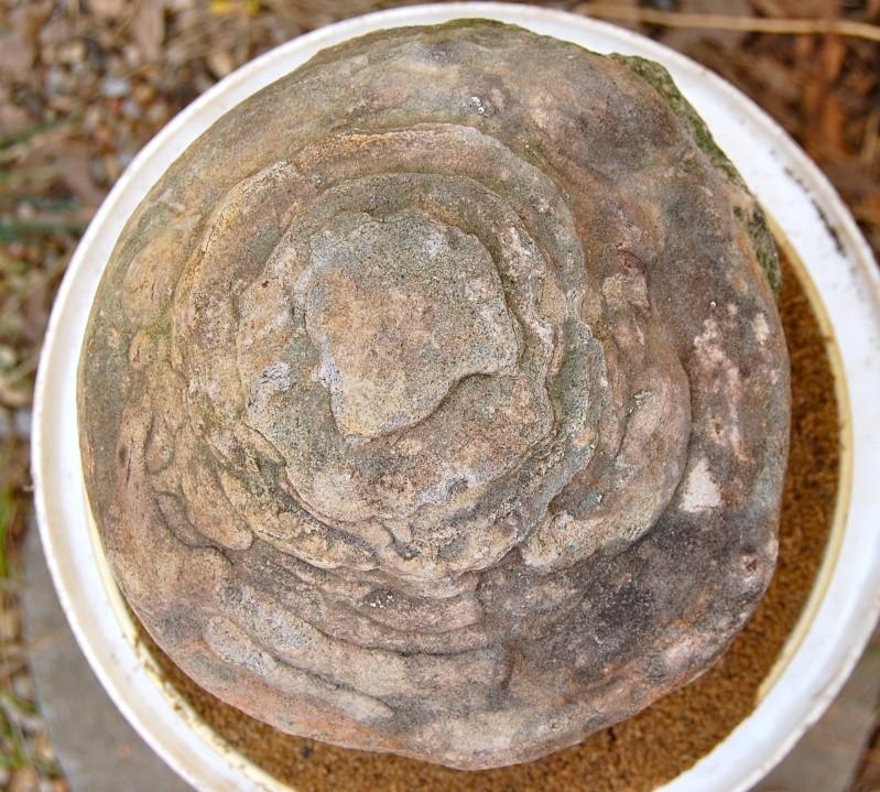 Round stone Dsc_0015